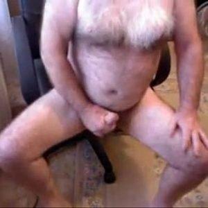 Urso Polar Ativo Gozando com Mão Amiga