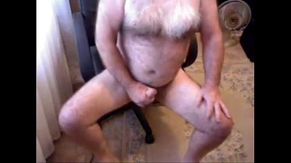 Urso gay polar batendo punheta na cadeira